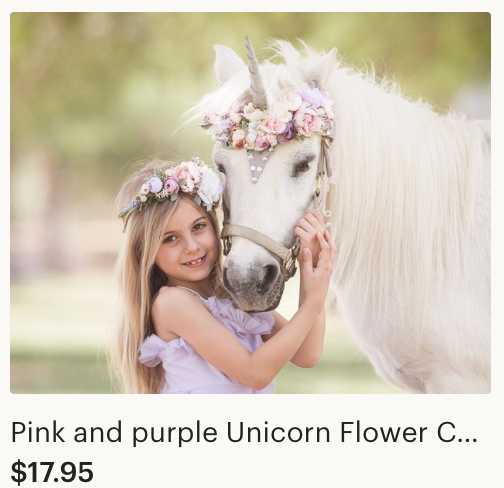 Unicorn Horn and Flower Crown Etsy