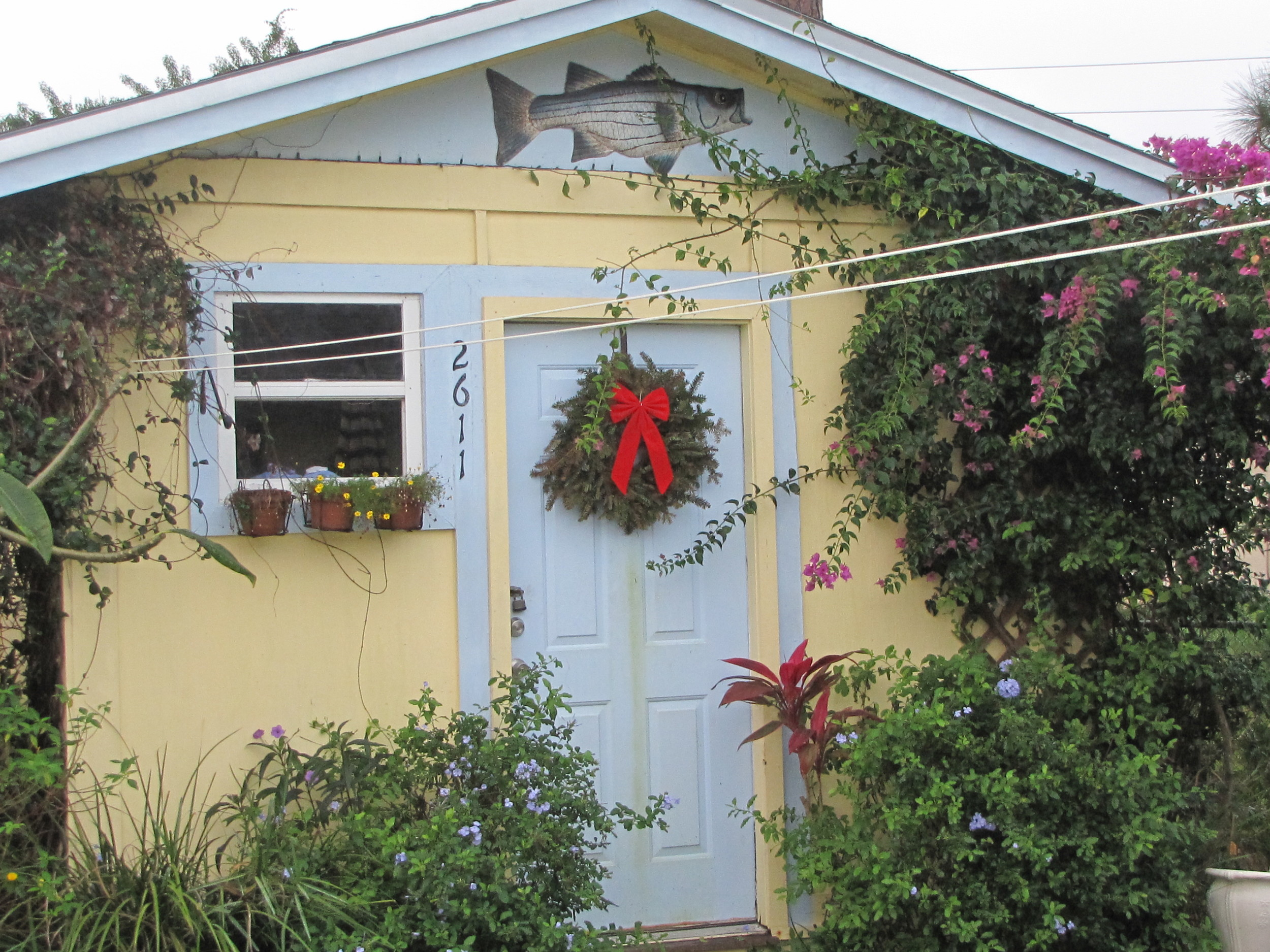 The little shed at Christmastime...