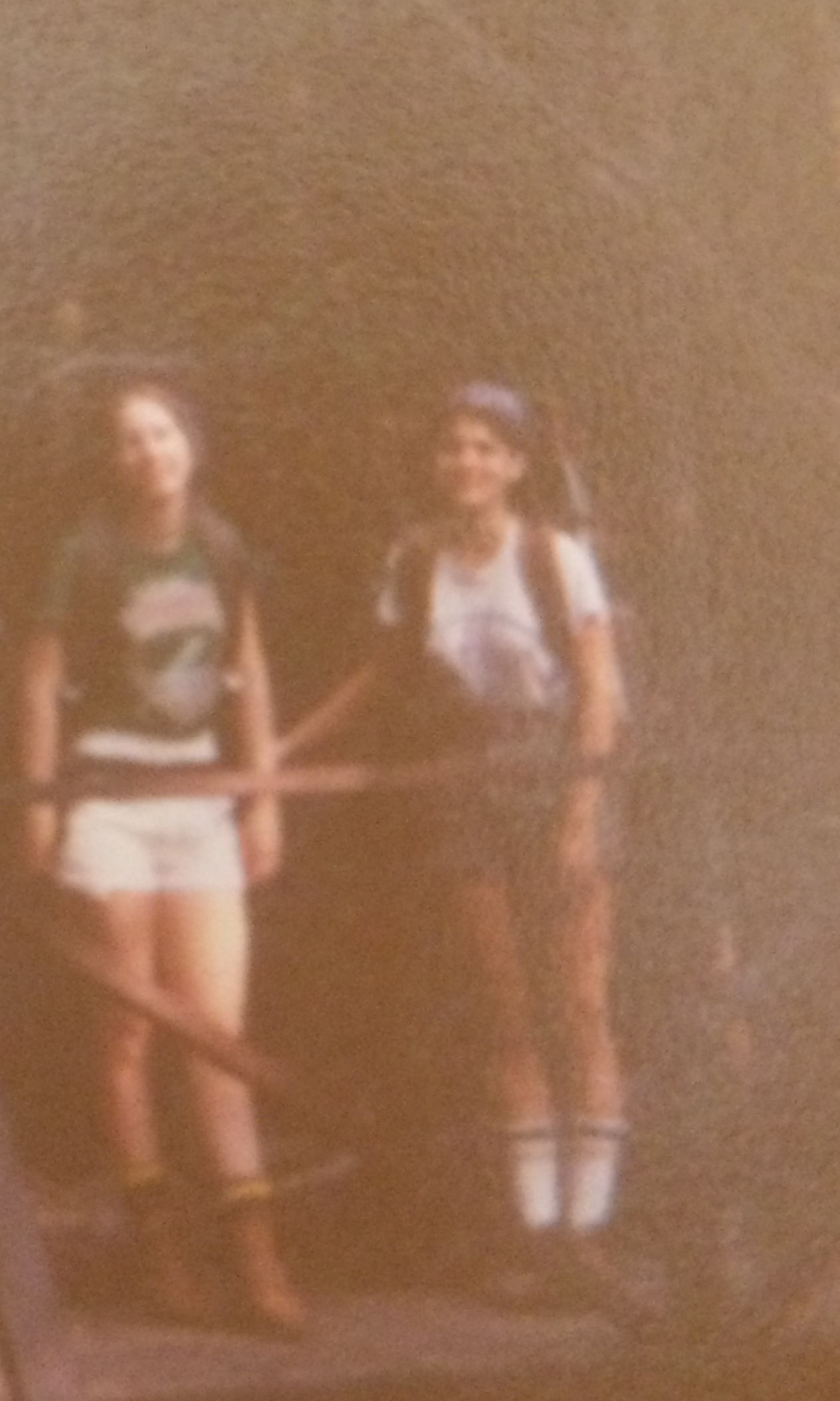 In the Allegheny National Forest 1977