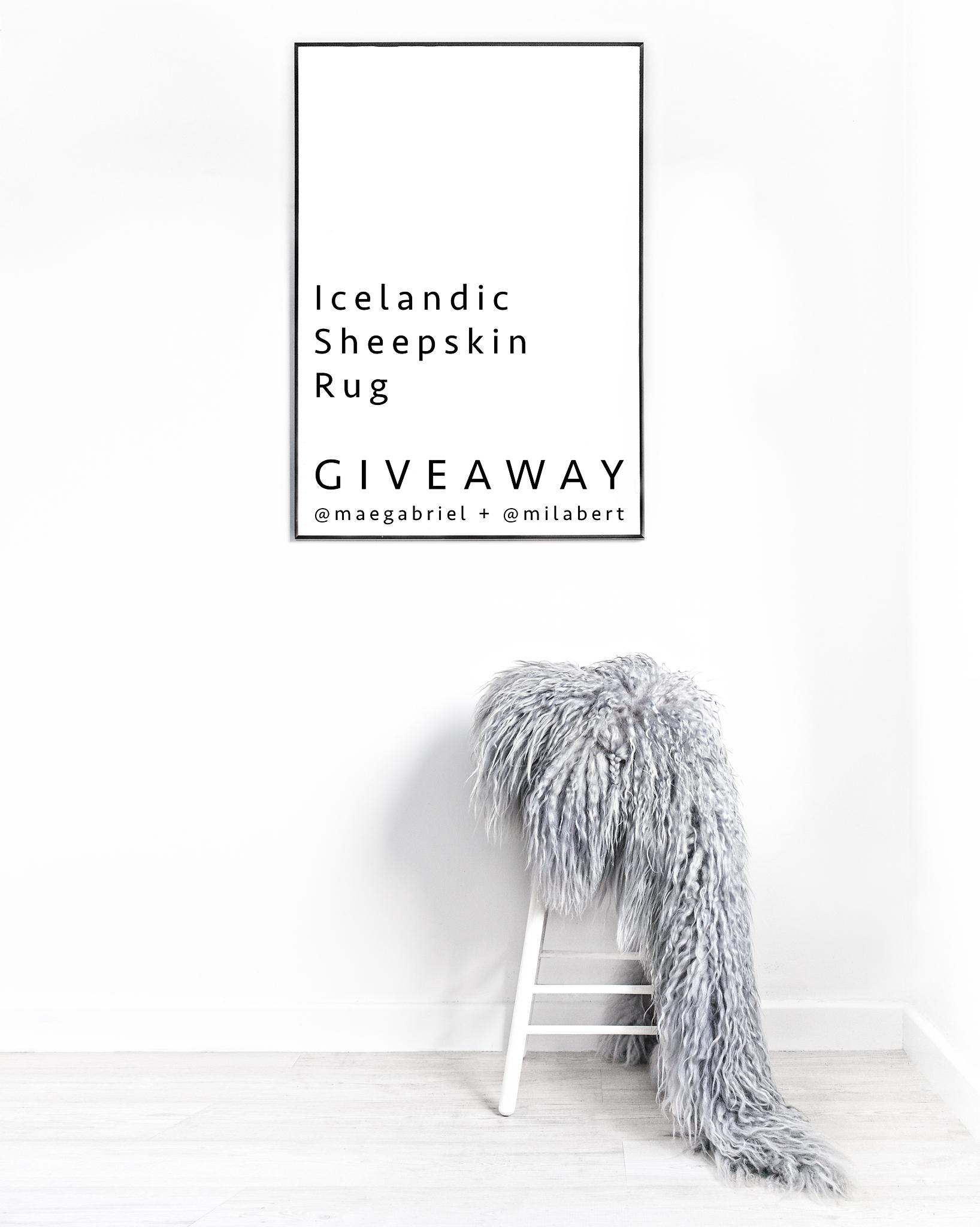 Milabert : Icelandic Sheepskin Rug GIVEAWAY!