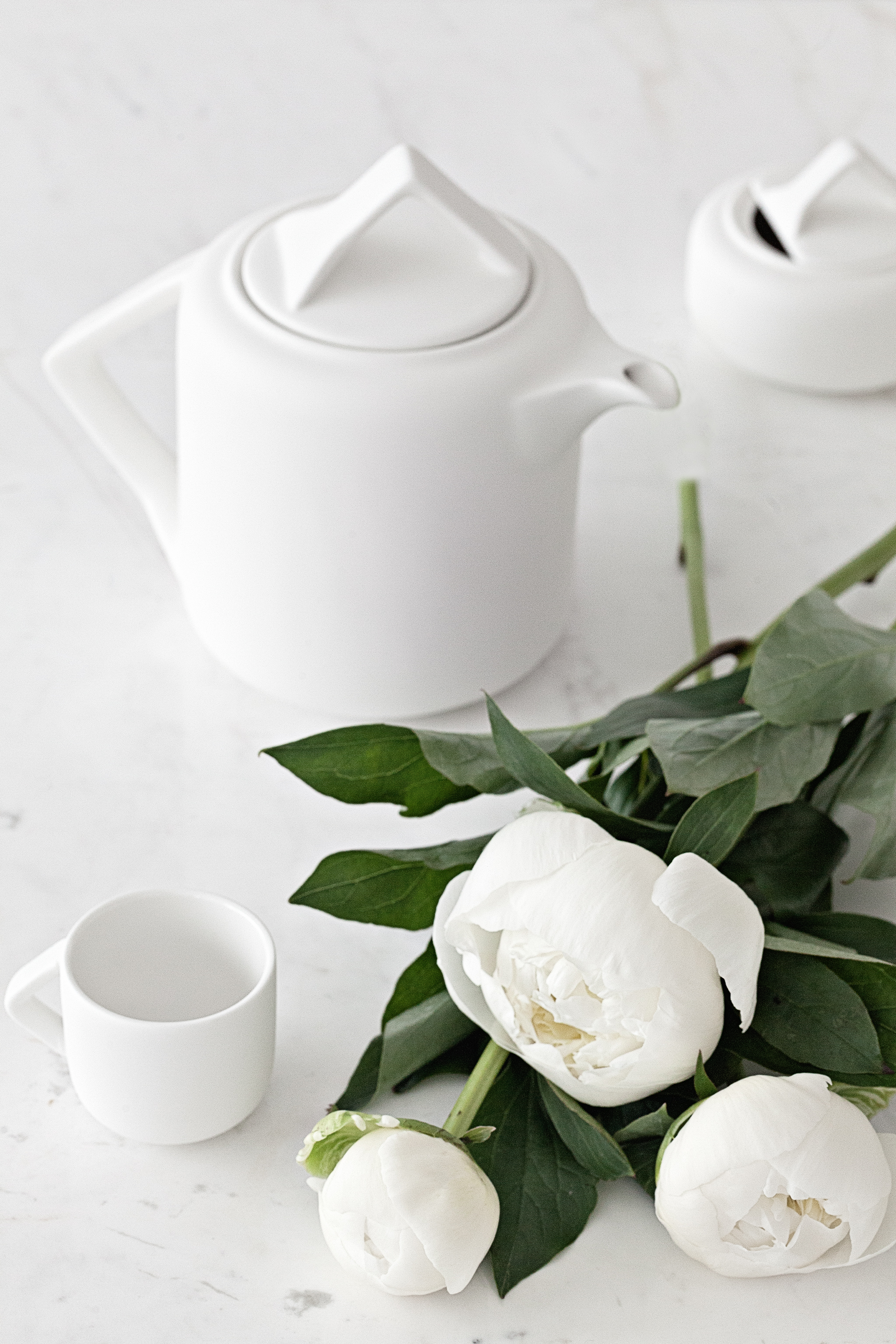 White Teapot by Pieter Stockmans   from Serax Belgium