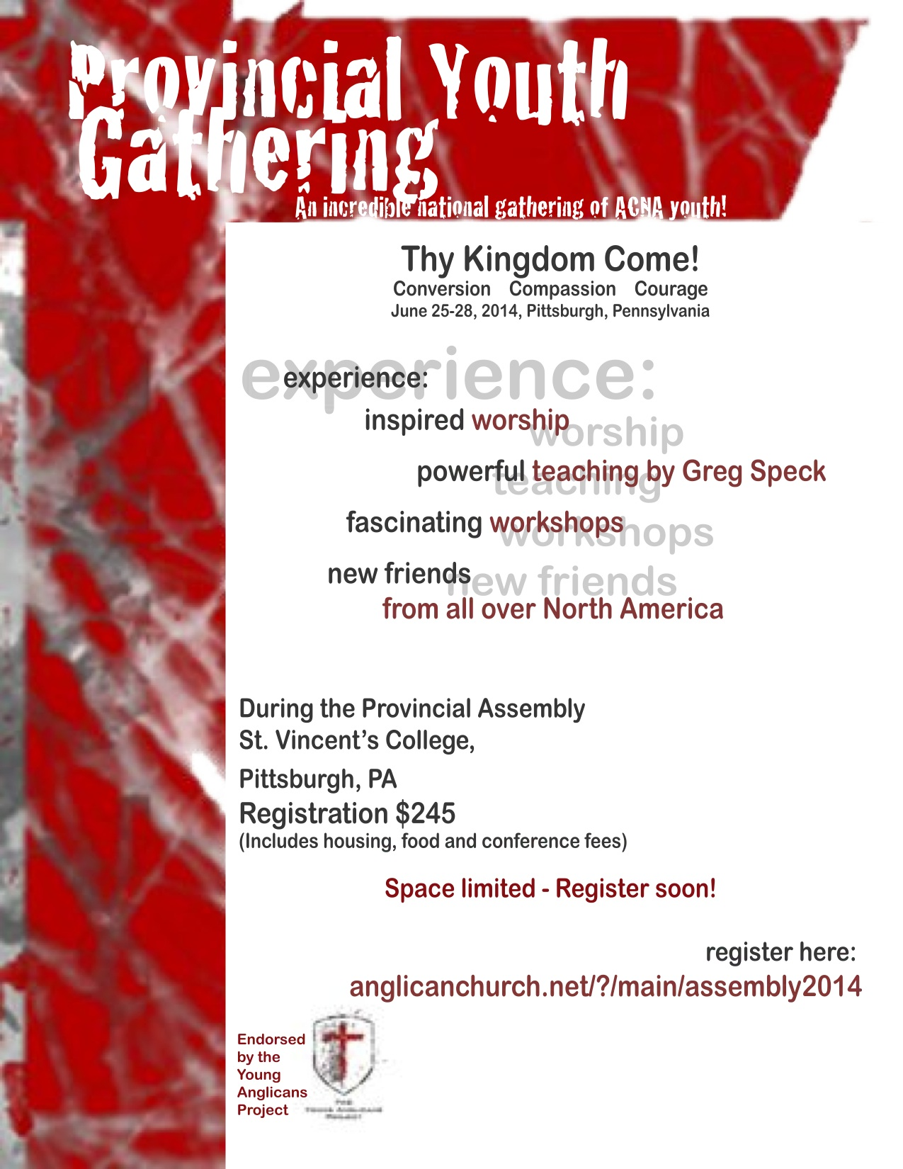 Email Provincial Assembly Youth Event Flyer.jpg