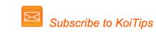 Subscribe_KoiTips.png