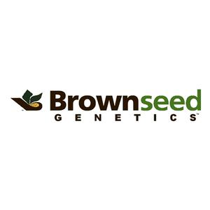 Video production client Brownseed Genetics