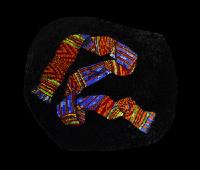 Kenti cloth by Elizabeth Gallery.jpg