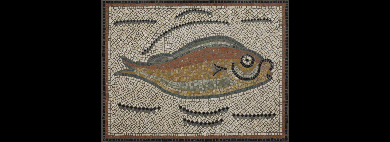 Roman Tunisian Fish