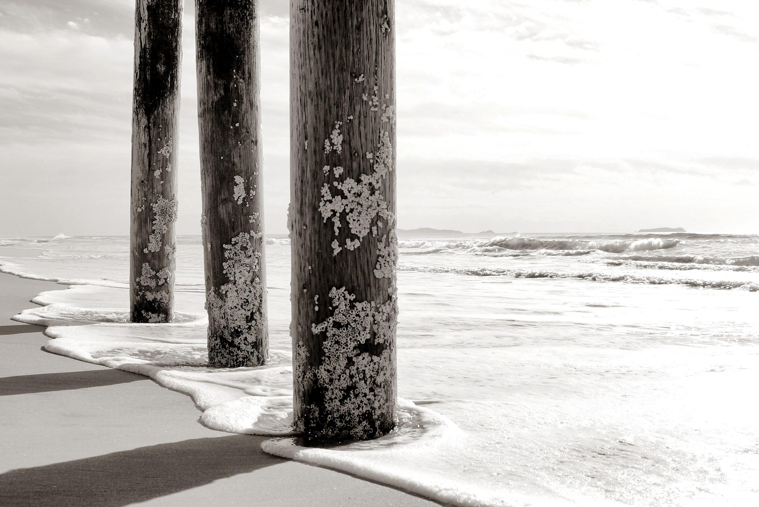 DSC03102 _Snapseed _Snapseed.jpg