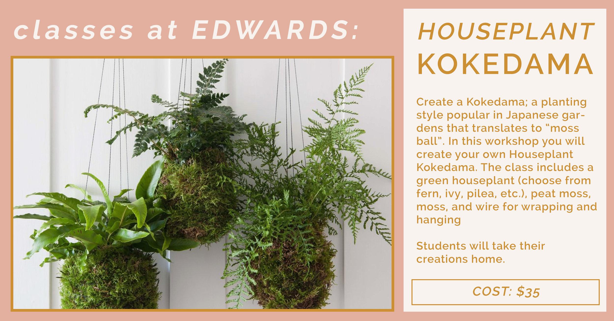 houseplant kokedama.jpg