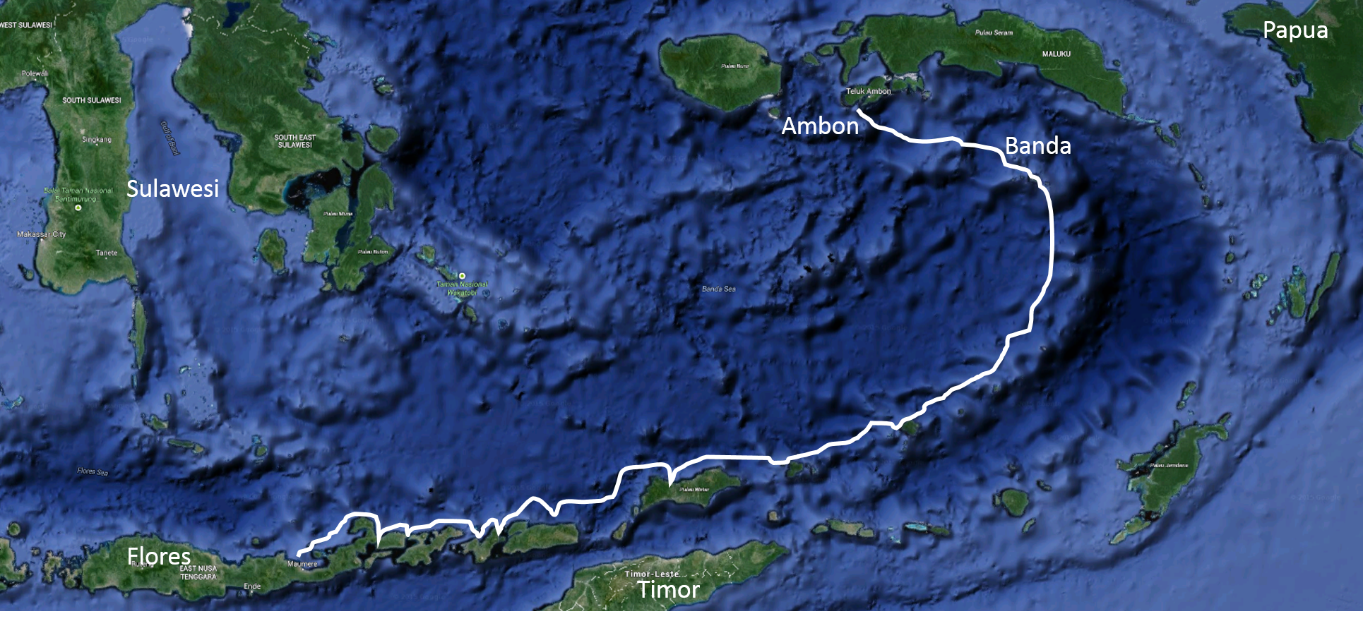 Flores to Ambon