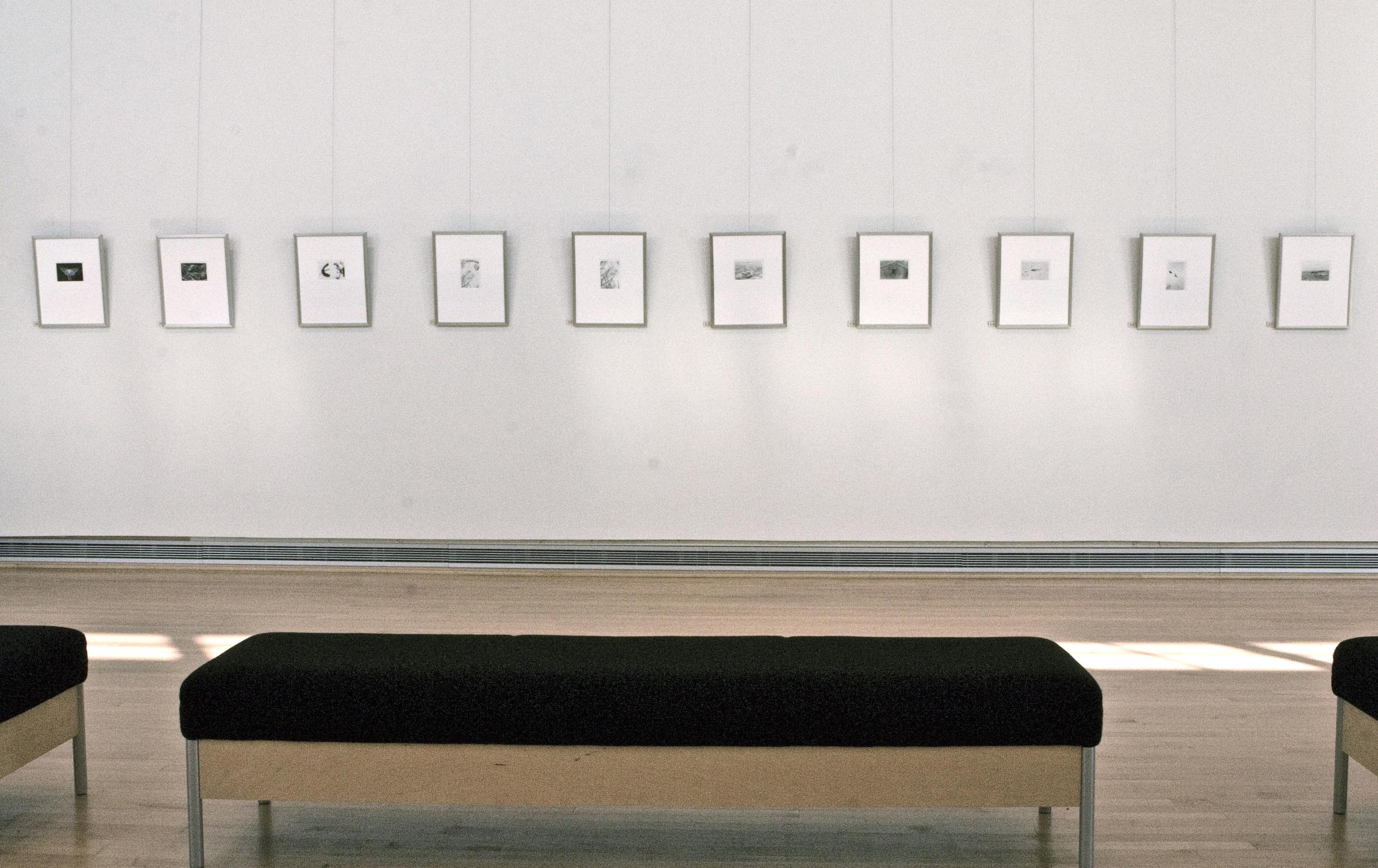 Joanne Miller BlackRock Center for the Arts copy.jpg
