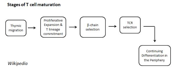 2015-02-19 00_25_45-Presentation1 - Microsoft PowerPoint.png