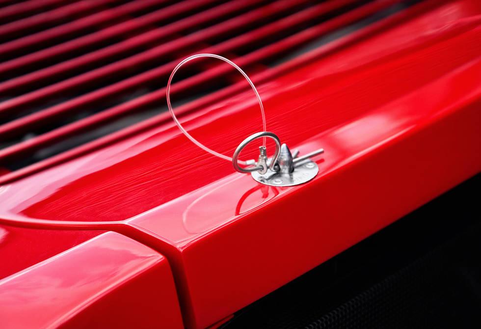 Ferrari-Enzo-Mule-14.jpg