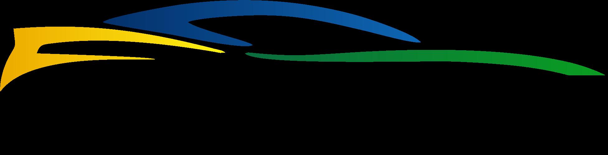 Logo Motorgrid Brasil PRETO PNG.png