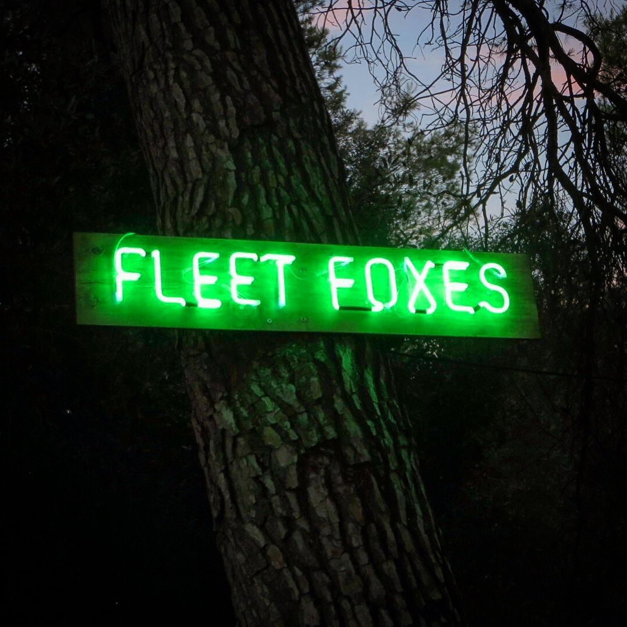vida-festivales-27lletres-fleetfoxes-neon.jpeg