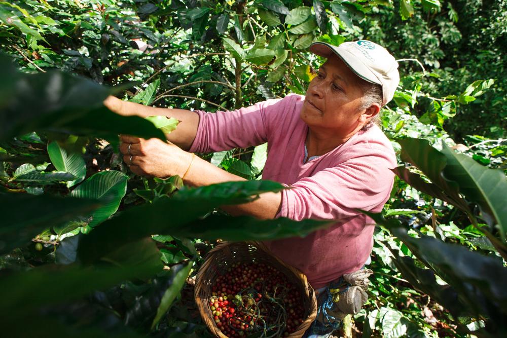 1312 Nicaragua Jalapa III.jpg