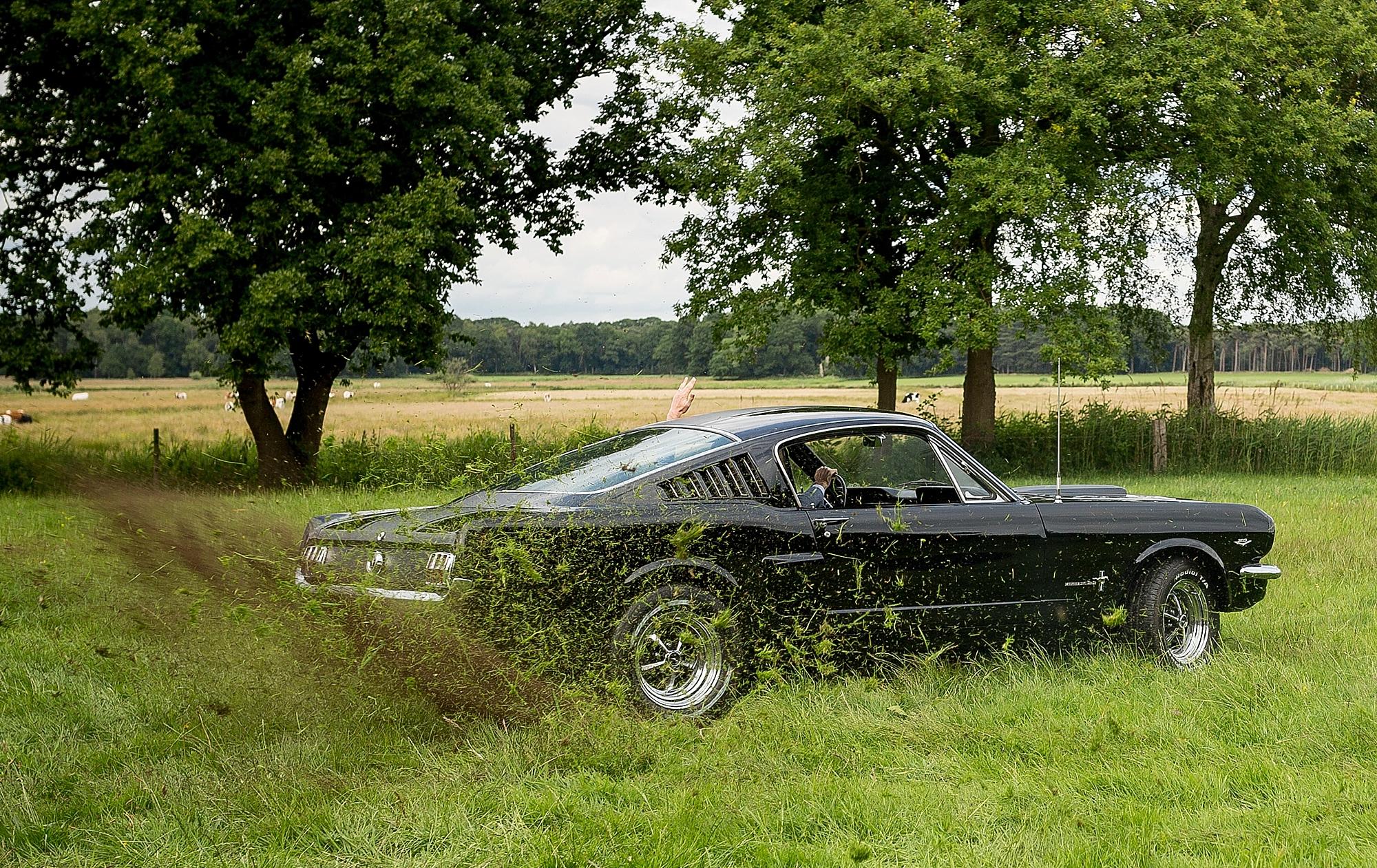 bruidsfotograaf-brabant-trouwen-in-het-bos-festivalbruiloft-vught-haaren_0101.jpg