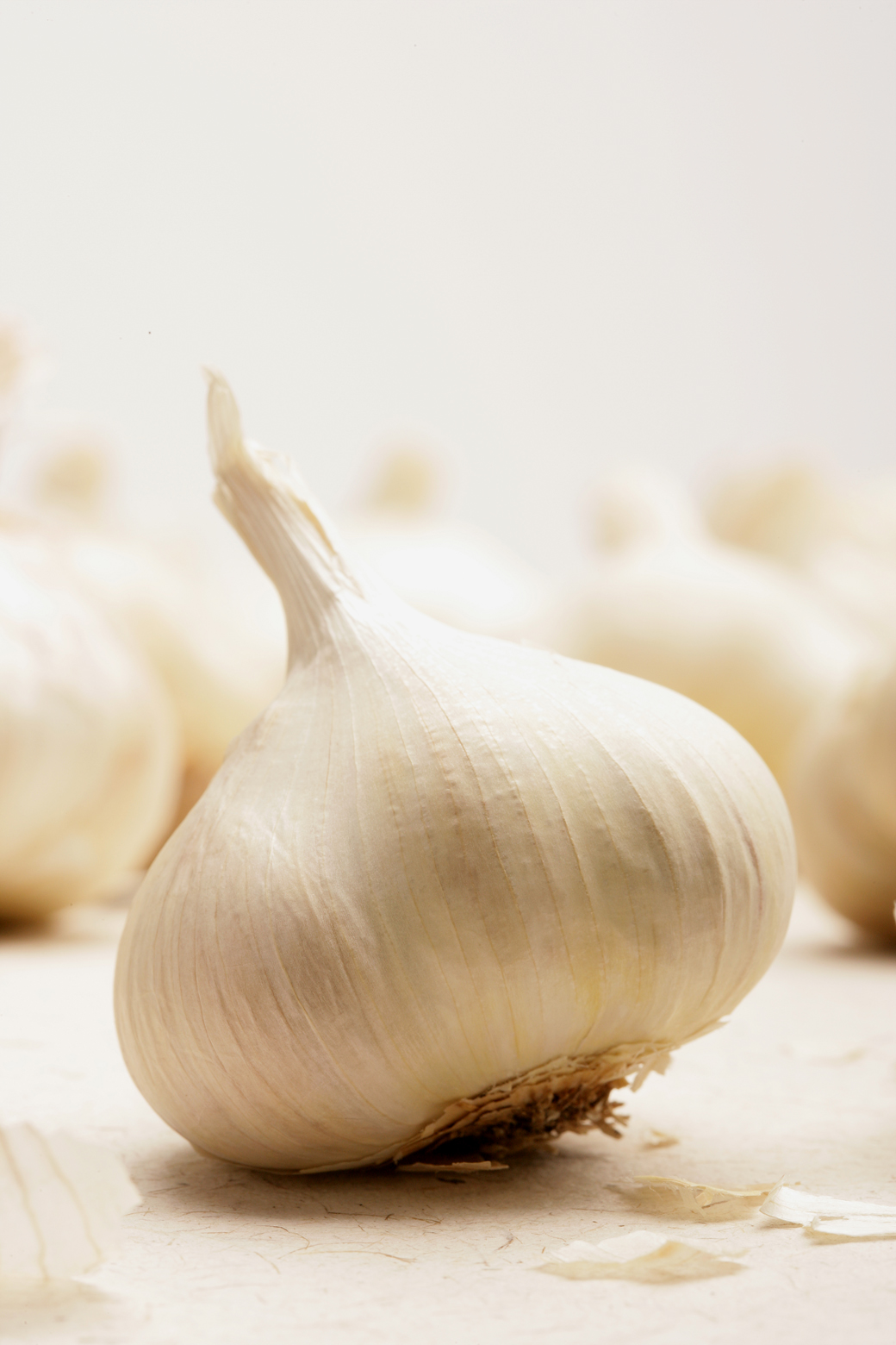 03-garlic fixed.jpg