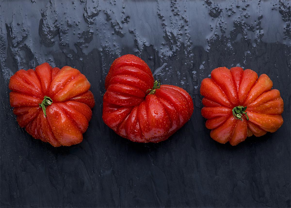Tomatoes -2.jpg