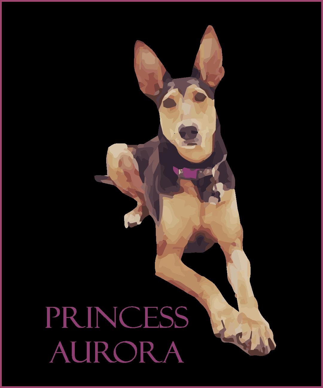 Princess-Aurora.png