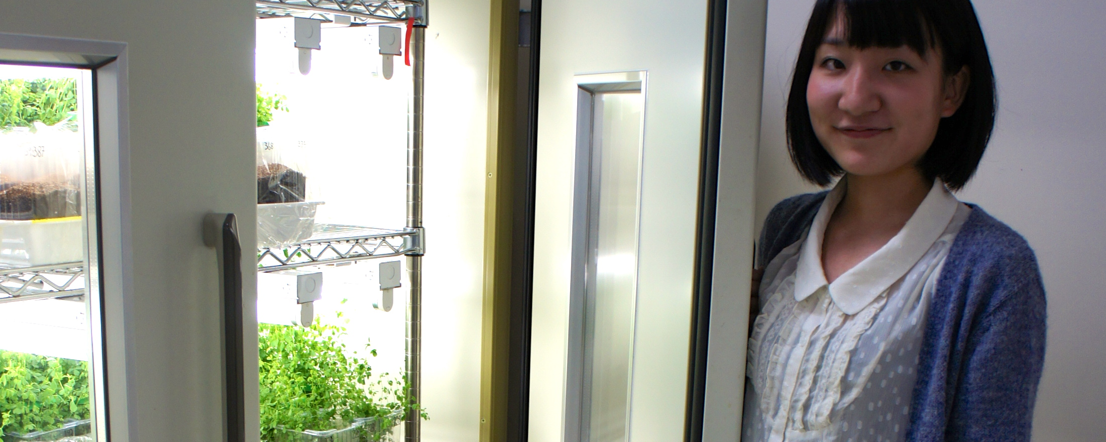 Yu Hasegawa stands by the laboratory fridge in which samples of infected plants are stored.
