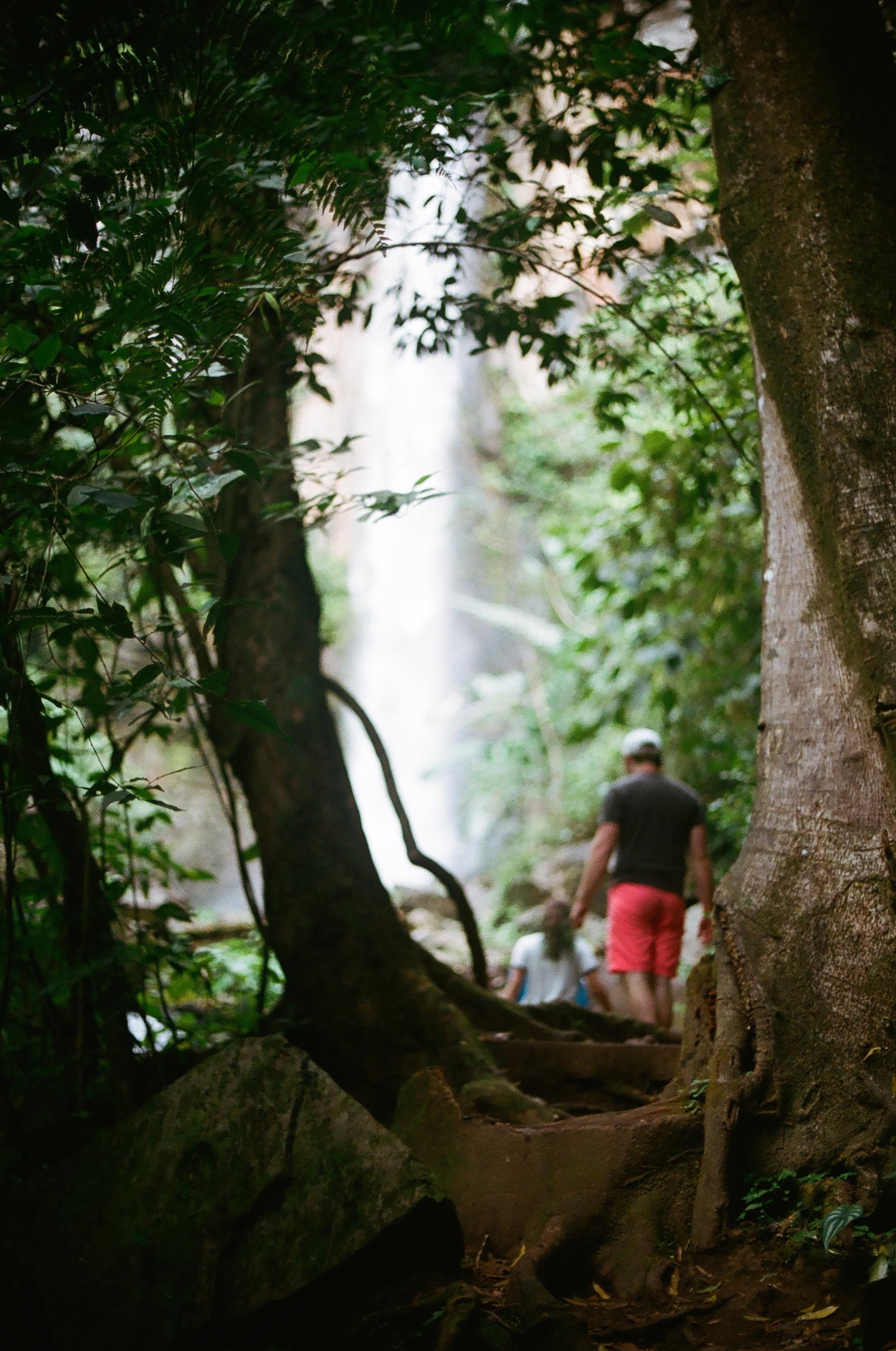 Jungle Hiking Pt2 Costa Rica