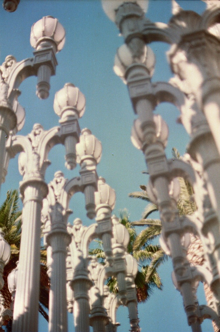 Lamps and Palm Trees