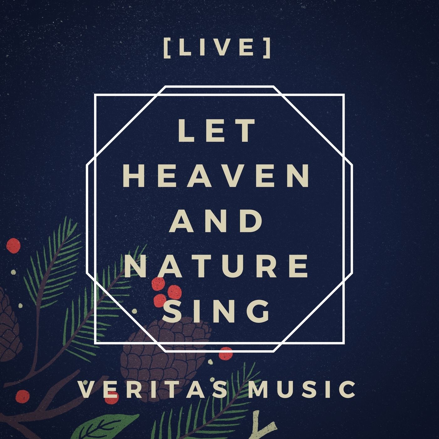 Let Heaven and Nature Sing (Live) - Album Cover-2.jpg