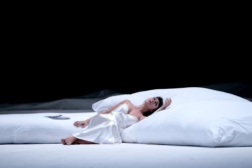 Violetta, La traviata    San Diego Opera*   April 22, 25, 28, 30   2017    *house debut