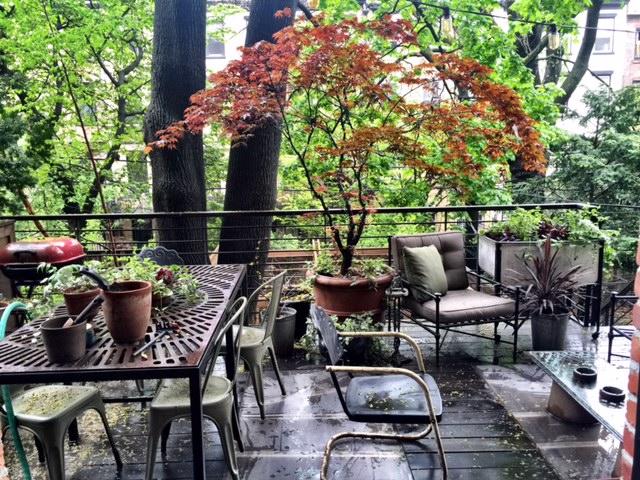 Benjamin garden2.jpg
