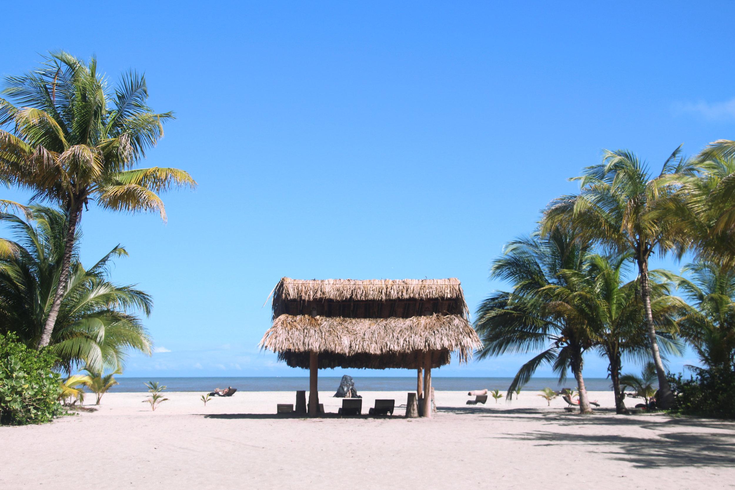 Beach Koralia.jpg