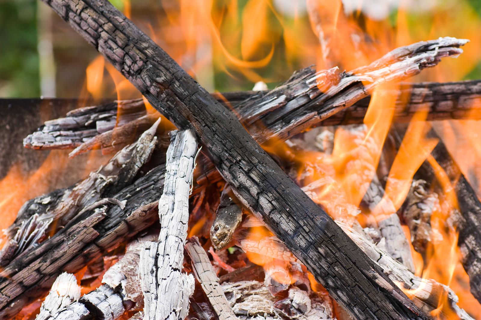 bigstock-Burning-logs-23435018.jpg