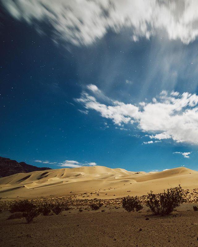 🌌 midnight dunes 🌌