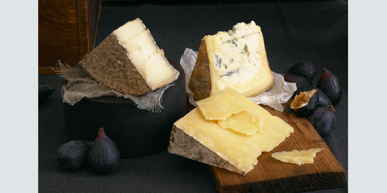 cheese-1.jpg