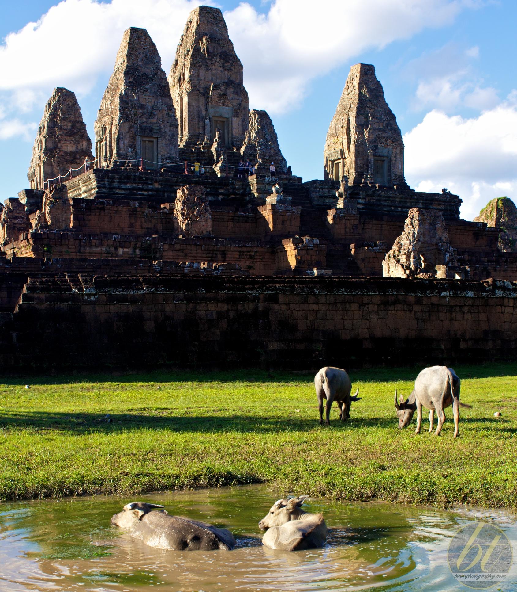 Pre Rup Temple, Angkor