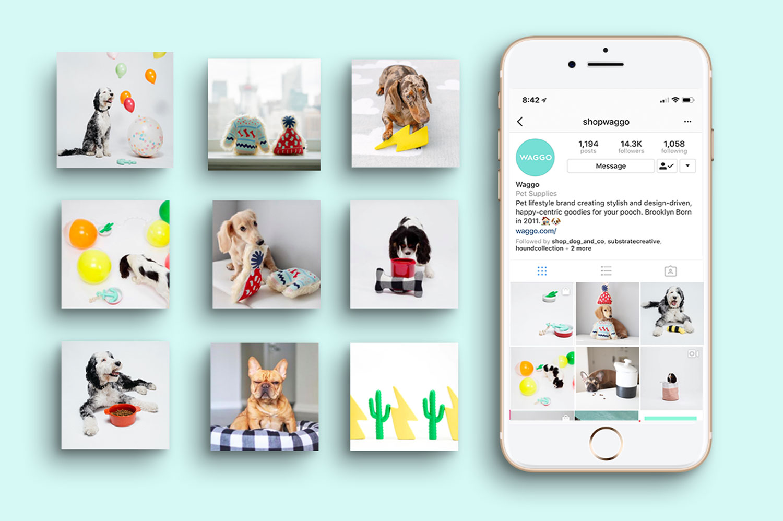 Waggo-social-media-instagram-calendar-design-portland-heather-maehr-graphic-designer.jpg