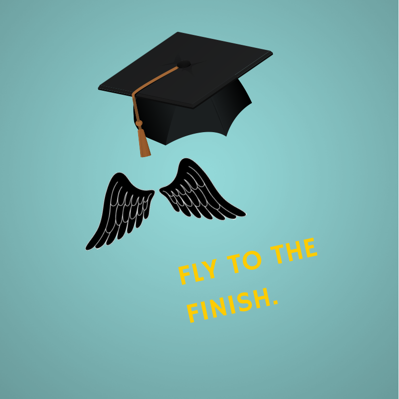 101 Tips for Finishing Your Ph.D. Quickly — ScholarShape