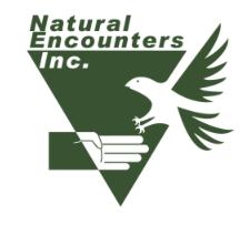 NEI Logo.png