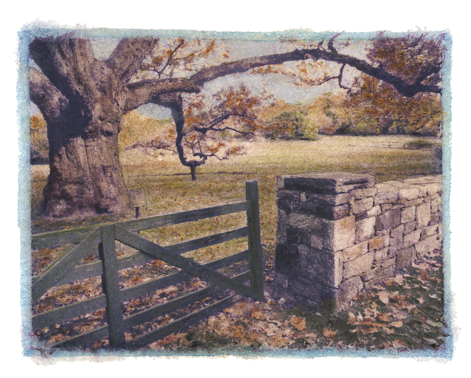Bedford Oak Gate