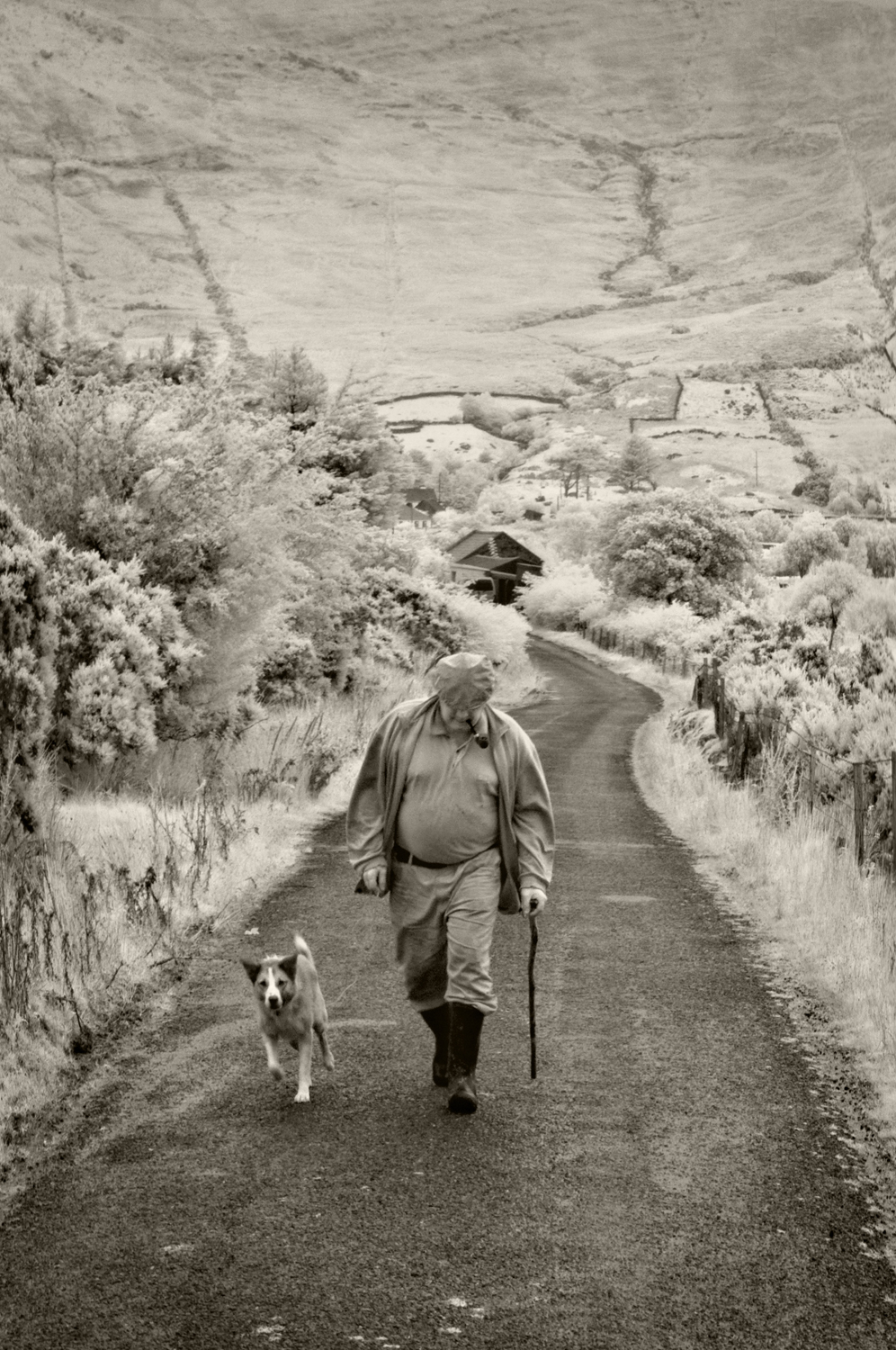 Man and Dog, Lough Na Fooey