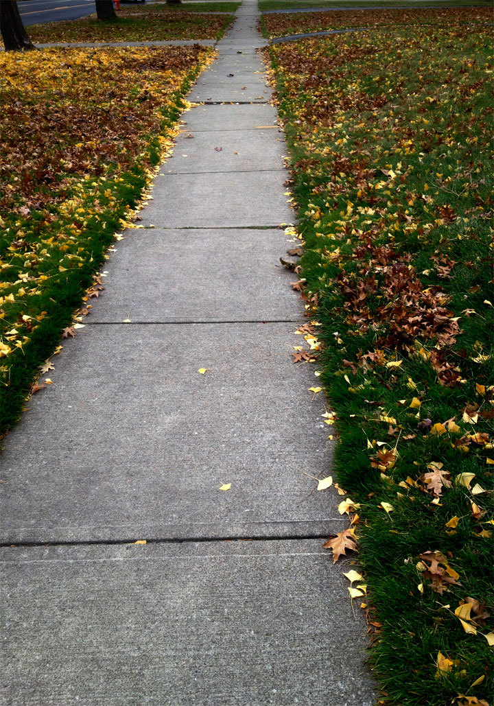 Sidewalk, 11/15/13, Lake Ave. Cleveland, OH.