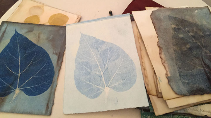 small eco prints then monoprinted using dried catalpa leaf and Akua inks