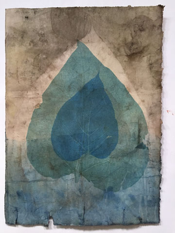 Eco print then monoprinted with Catalpa leaves and Akua inks.