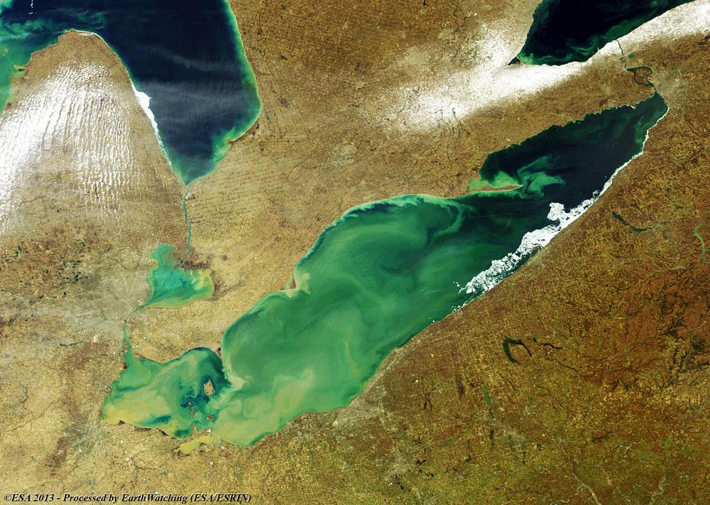 Image of Algal Blooms in Lake Erie.