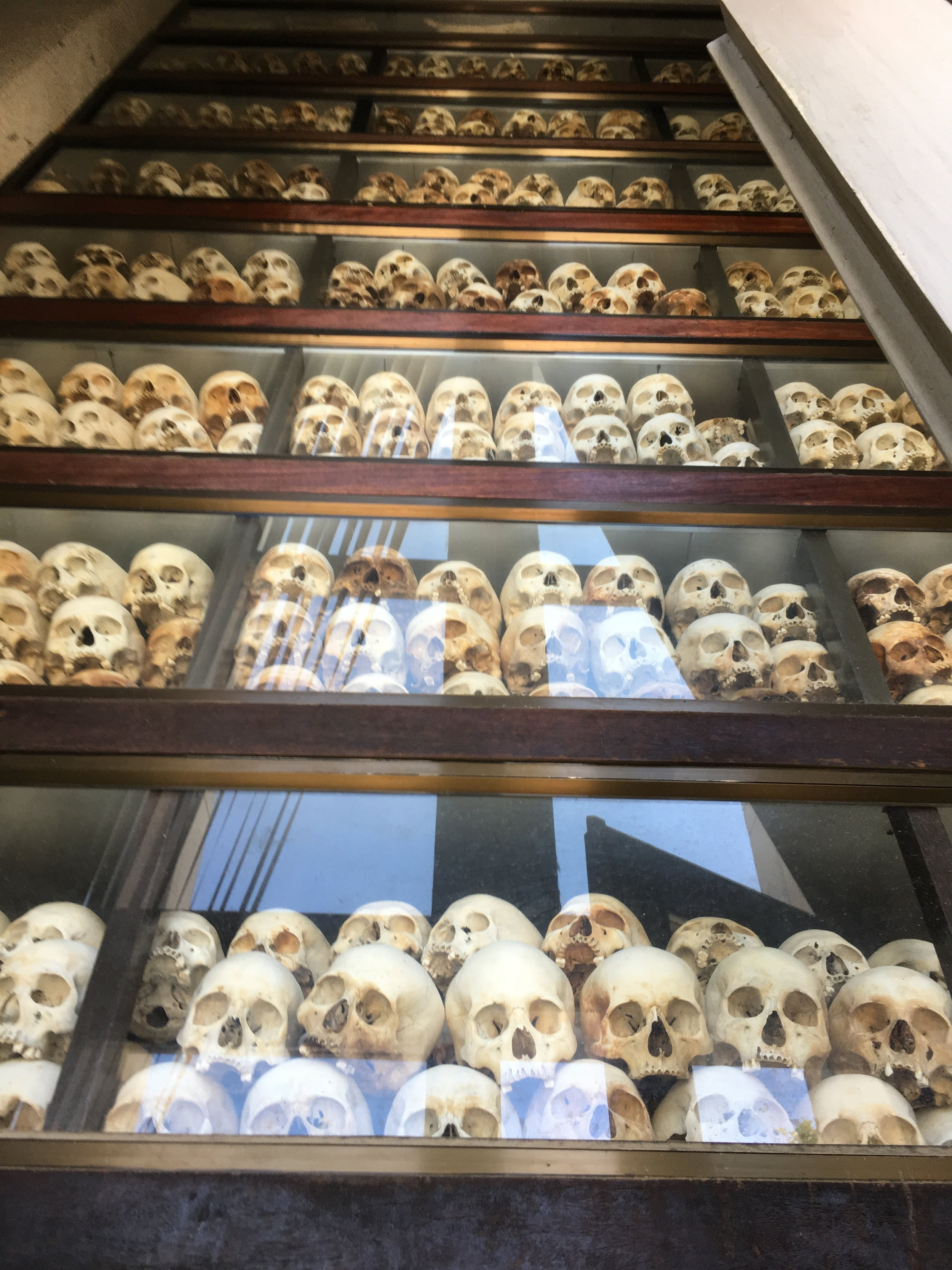 All skulls collected from the killing field mass grave, arranged from younger age to older at the top. It was a terrible terrible sight.