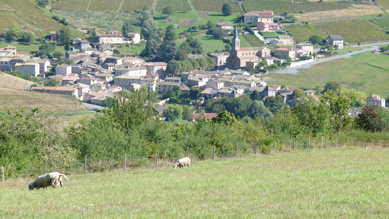 Jullié from Vâtre