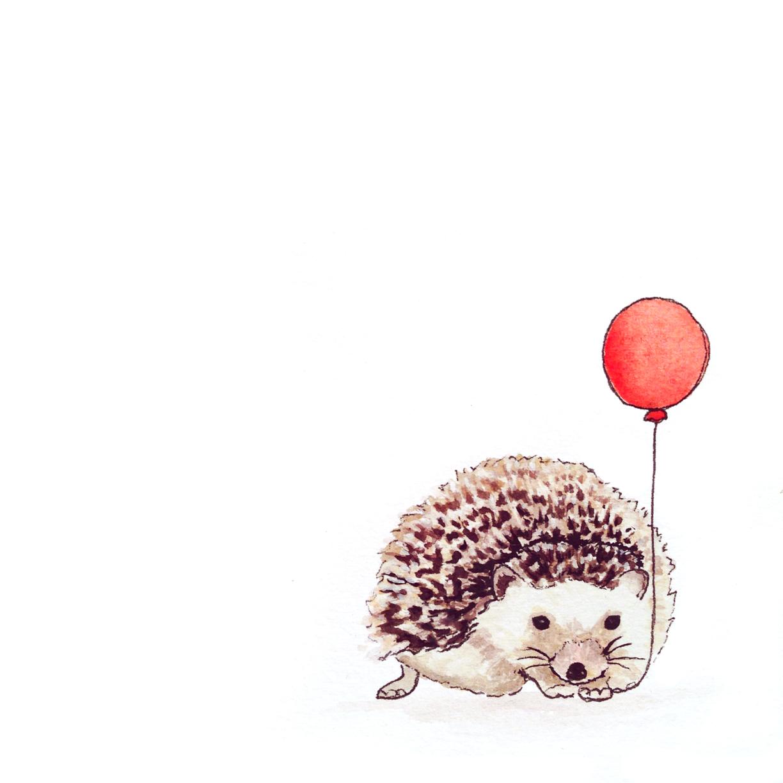 06-140205-hedgehog.jpg