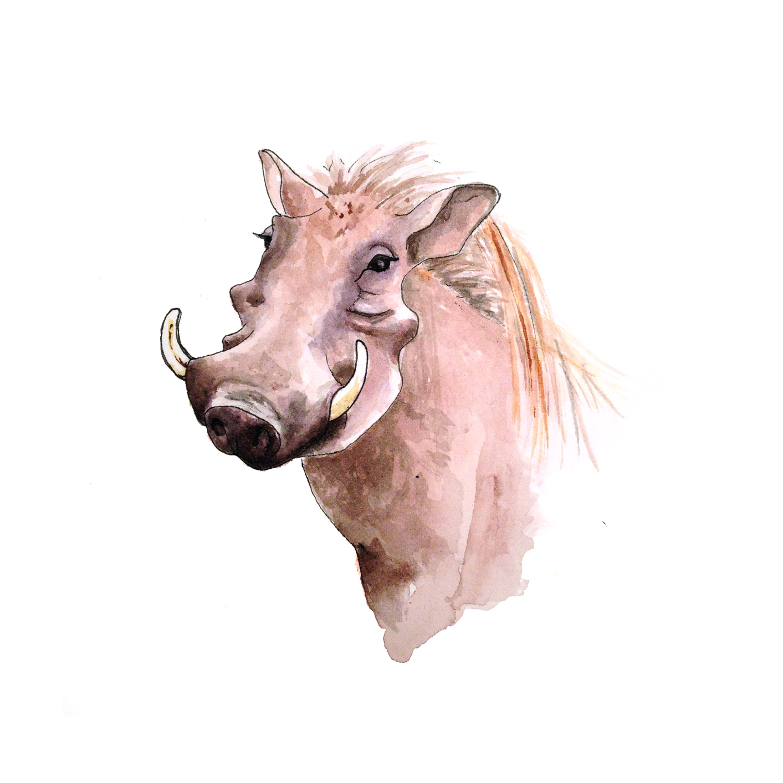 37-140909-warthog.jpg