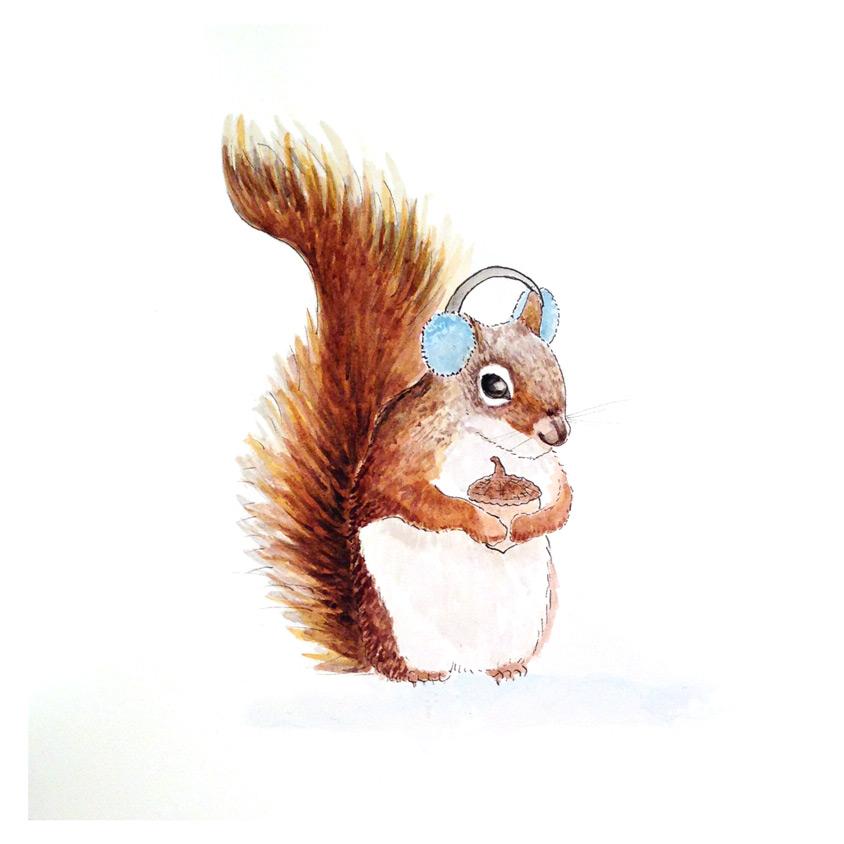 46-141118-Squirrel-2.jpg