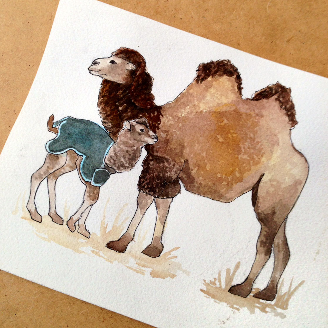 10-140305-camel.jpg