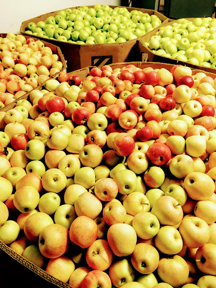 Multiple varieites of apples in their bins